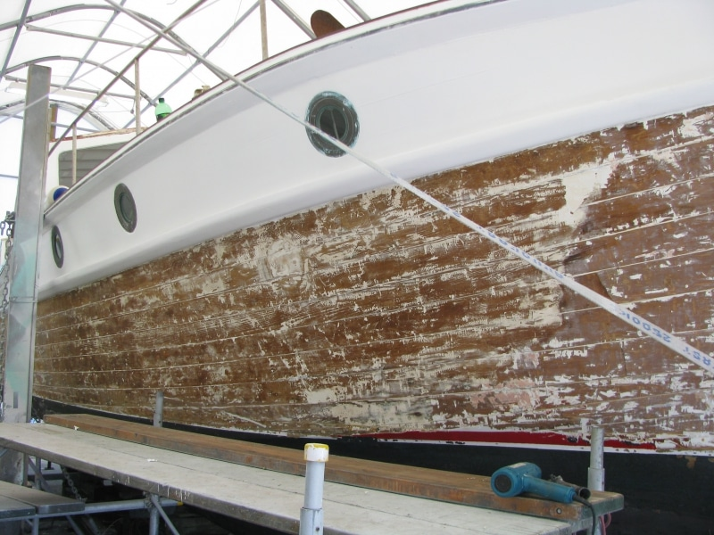 Marguerite - stripping hull paint