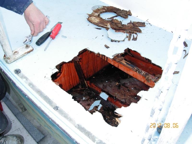 rot damage